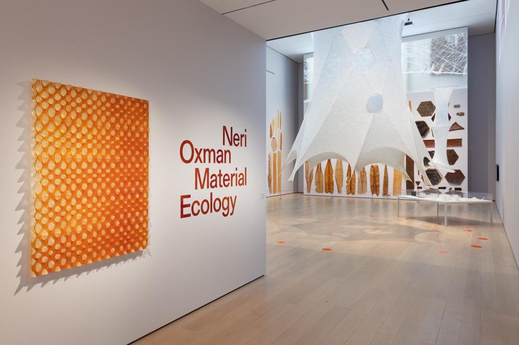 Quando i bachi filano la seta italiana per il MoMA di New York…